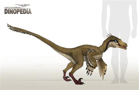 Velociraptor mongoliensis by CamusAltamirano on DeviantArt
