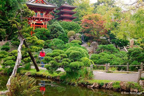 Garden Of San Francisco Ca by Japanese Tea Garden Travel Tips Trippy