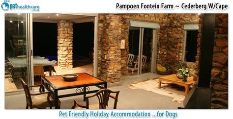 pampoen fontein farm pethealthcarecoza