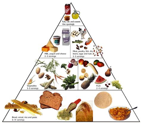 ideal cuisine top diet foods healthy food diets