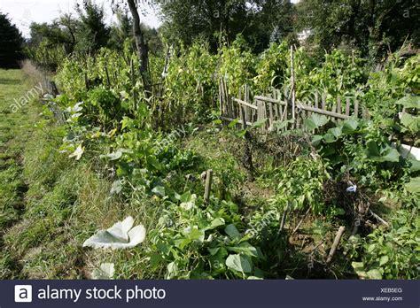 Deutschland, Bauerngärten, Gemüsegarten, Europa, Bauernhof