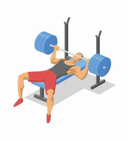 Bench Press Vector Clip Barbell Lying Working