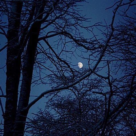 aesthetic blue moon