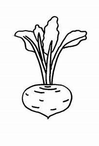 Kostenlose Malvorlage Obst Und Gemüse Kostenlose