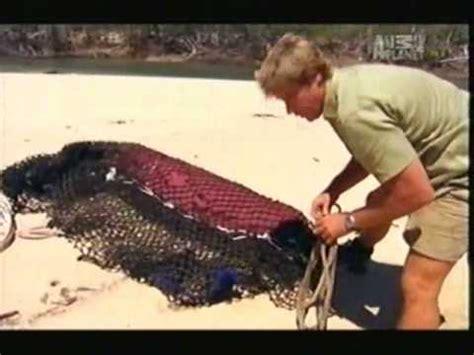 crocodile hunter super croc part  youtube