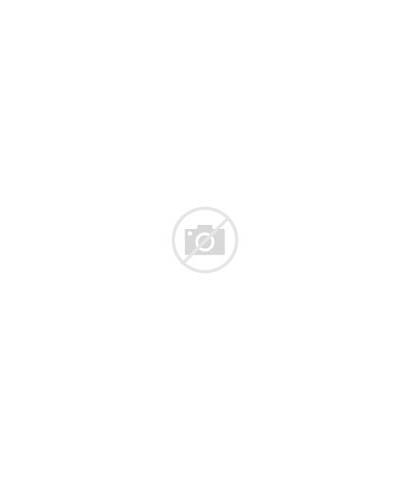 Concept Fairy Tail Wikia Racer Sawyer Midnight