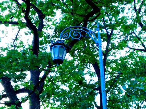 picture street lamp object metal cast iron iron