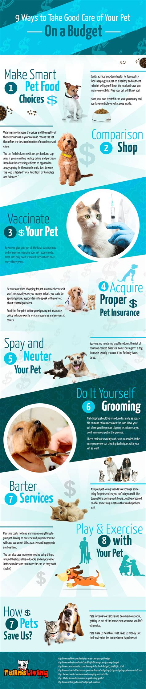 pet care   budget infographic  cent   time