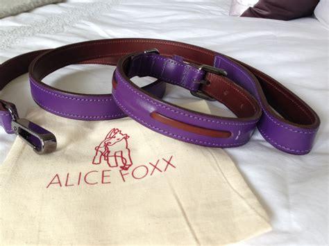 Alice Foxx Miss Darcys Adventures