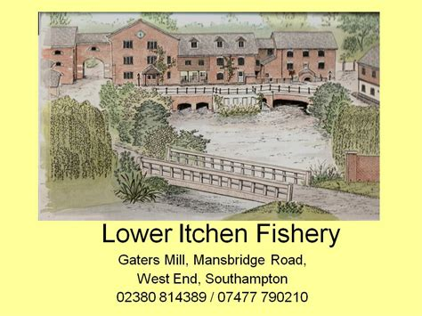 itchen fishery  fly fishing    finest