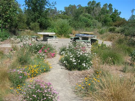 california plant gardens february 2013 the granada native garden newsletter