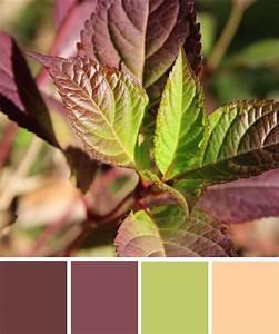 Wandfarbe Grün Palette : farbinspirationen aus der natur herbstfarben aubergine und gr n k che farben gr ne ~ Watch28wear.com Haus und Dekorationen