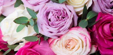colori dei fiori linguaggio dei fiori i significati dei colori delle