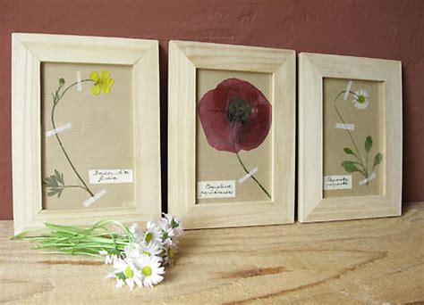 relooker ses meubles de cuisine pour un herbier esprit cabane idees creatives et ecologiques