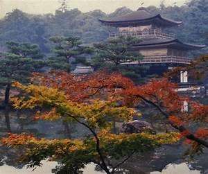 November Kyoto