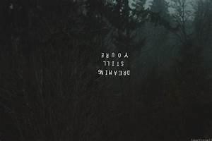 dream, beautiful, dark, forest - image #500512 on Favim.com