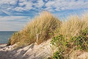 Fototapete Strand Ostsee : fototapete weg zum strand durch d nen bei heiligenhafen an der ostsee pixers wir leben um ~ Frokenaadalensverden.com Haus und Dekorationen