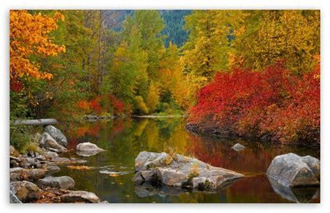nason creek stevens pass washington  hd desktop