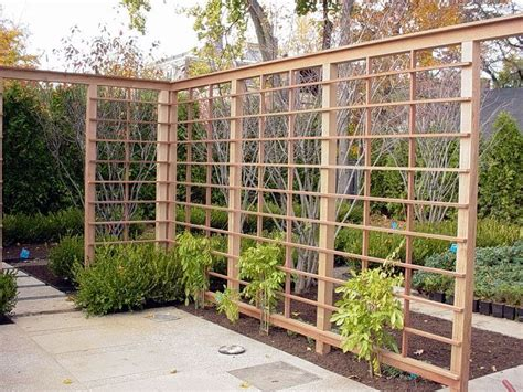 lattice fence with vines 37 best images about grape vine arbors on pinterest gardens provence style and garden inspiration