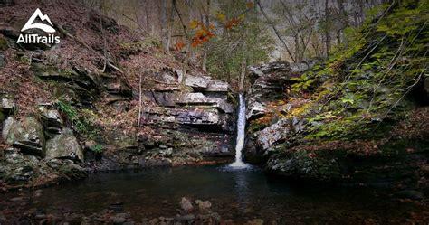 trails  caney creek wilderness arkansas alltrails