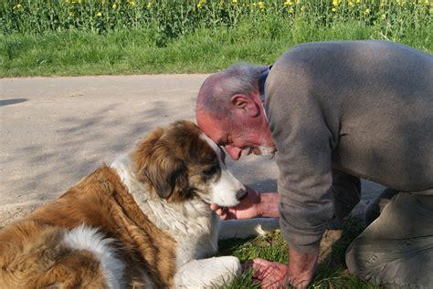 seniorengruppe hundeschule nienburg