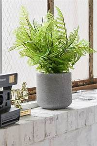 Shockingly, Good, And, Convincing, Faux, Indoor, Plants