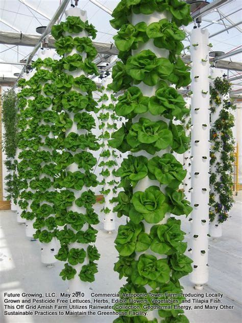 Vertical Gardening Supplies by Buy Gardening Supplies Gardeningwheretostart Vertical