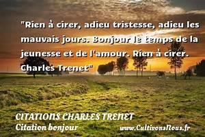 Rien A Cirer : citation charles trenet les citations de charles trenet ~ Preciouscoupons.com Idées de Décoration