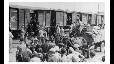 Trains And Boxcars Of The Holocaust