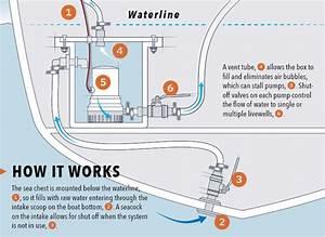 Livewell Drain Below Waterline