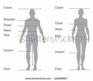 Human Body Parts Stock Photos, Images, & Pictures ...