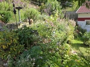 Garten Im September : garten und balkongarten einfache tipps aus der praxis ~ Whattoseeinmadrid.com Haus und Dekorationen