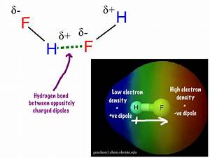 What Are Some Examples Of Hydrogen Bonds