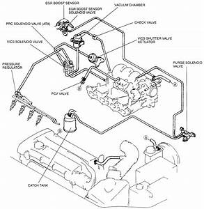 2002 Ford Escape Vacuum Hose Diagram
