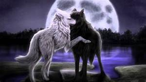 Some kind of beautiful- Anime wolves - YouTube