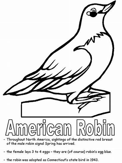 Robin Coloring State Pages American Bird Michigan