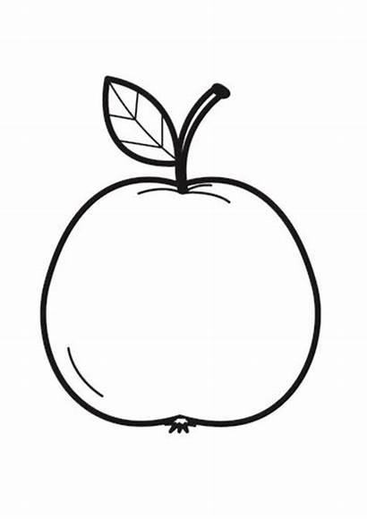 Colorear Manzana Para Dibujo Appel Kleurplaat Apfel
