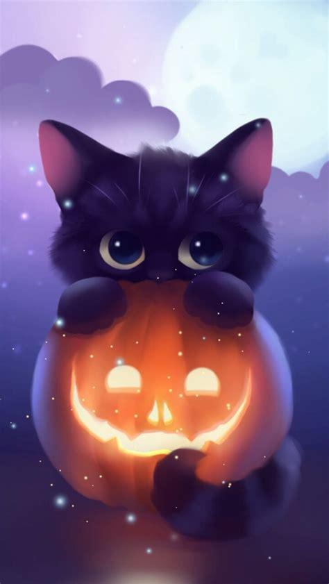halloween kitten pumpkin art iphone wallpaper iphone