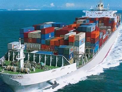 Logistica Dispone Almacenes Ofrecer Logistico Servicio Completo