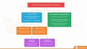 Complete Guide To Life Insurance Pt 2  U2013 Commonly Seen Policies