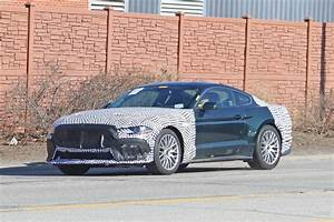 Spy Photos: 2021 Bullitt or New Mach1 Mustang? | DrivingLine