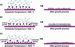 Growth Mechanism Of Zno Structures On Graphene At Substrate