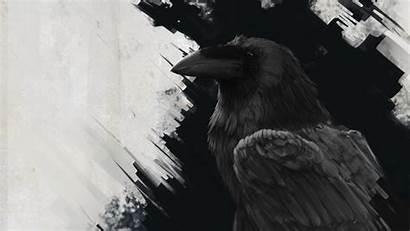 Raven Bird Background 1080p Lines Fhd Hdtv