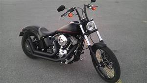 Solo Seat On Softail Page Harley Davidson Forums Cross