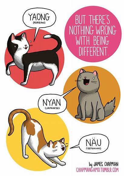 Sounds Different Languages Animal Animals Comic Japanese