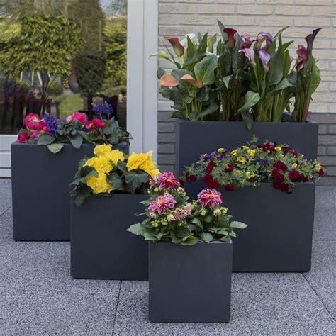 bac 224 fleurs polystone l50 h50 cm anthracite plantes et