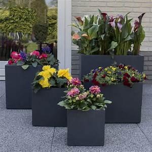 Bac A Fleur Balcon : bac fleurs polystone l50 h50 cm anthracite plantes et jardins ~ Teatrodelosmanantiales.com Idées de Décoration