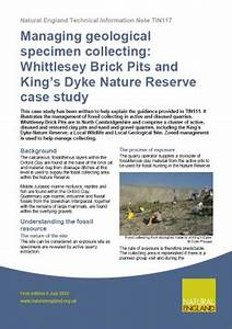 Managing geological specimen collecting: Whittlesey Brick ...