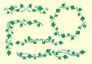 Simple Ivy Vine Vectors - Download Free Vector Art, Stock ...