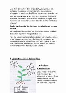 Combien De Temps Pour Récupérer 3 Points : irrigation par tuyau poreux enterre ~ Medecine-chirurgie-esthetiques.com Avis de Voitures